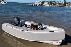 Phifer light grey cover is the only cover we recommend in light colours, even the husky likes it!
