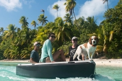 Dogs love our decks in Polynesia