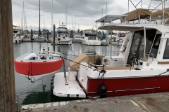 Ranger Tug with custom Olsson davits in Seattle - perfect match